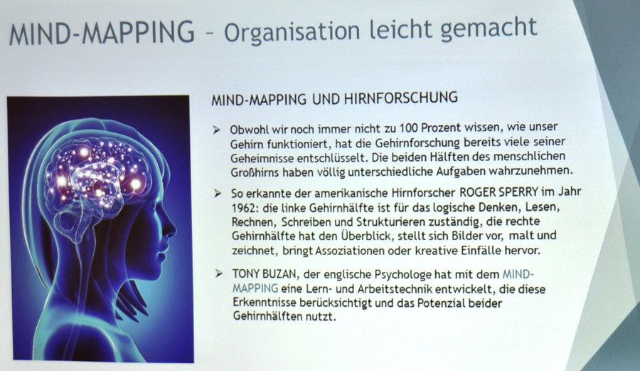 Mindmapping und Hirnforschung