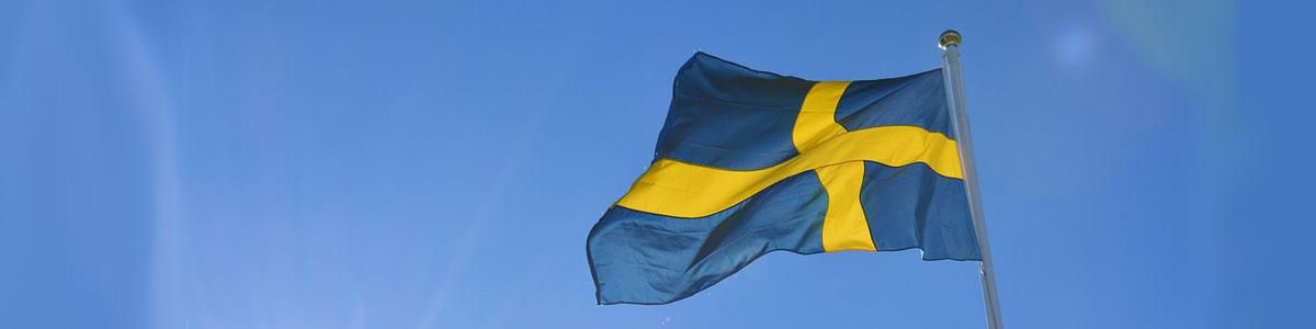 Schwedischkurs - schwedisch lernen in Brunn Mödling